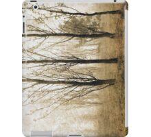 Campbell Park iPad Case/Skin