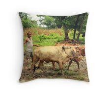 Nepalese Farmer Throw Pillow