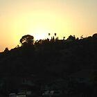 Sunset in Los Angeles by swylie
