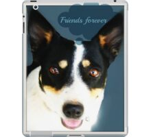 friends forever iPad Case/Skin