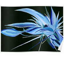 Blue Crystal  Persuasion   Poster