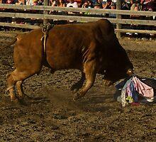 Bull Power by lincolngraham