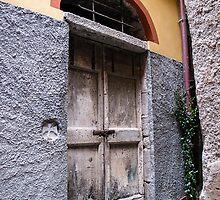 wooden door by Anne Scantlebury