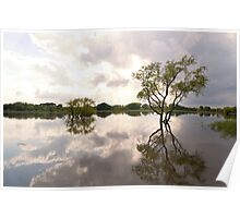 Reflective Flood Waters Poster