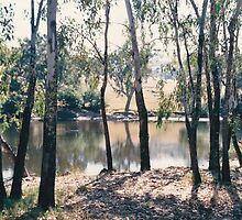 Murray River - NSW Australia by Sandy1949