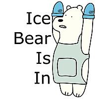 Ice Bear Is In Photographic Print