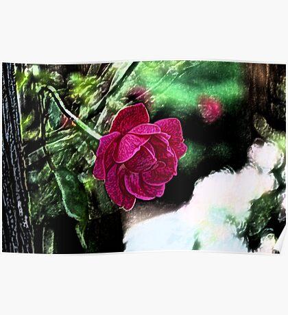 Rojo Rose Poster