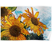 Sunny Day Sunflowers Poster