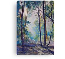 Early Morning Bushwalk Canvas Print