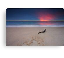 Allure Canvas Print