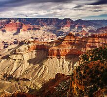 From the Rim into the Canyon by Karen Willshaw
