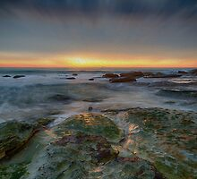 Whale Beach by renekisselbach