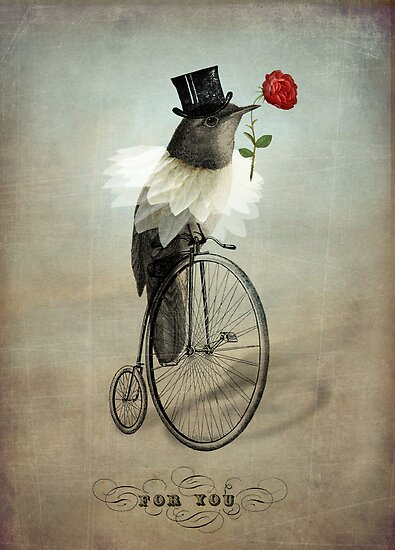 The Groom by Catrin Welz-Stein