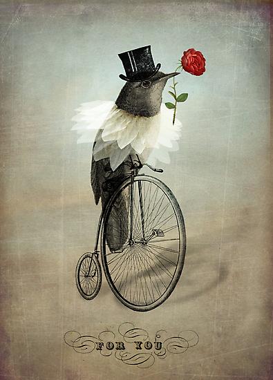 The Groom by Catrin Welz-Stein