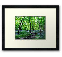 In bluebell heaven Framed Print