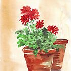 Geranium or Pelargonium? by Maree  Clarkson