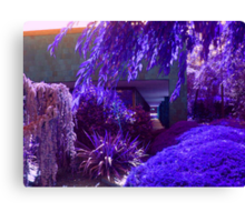 Purple and Lavender Garden Canvas Print