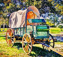 Wagon by venny