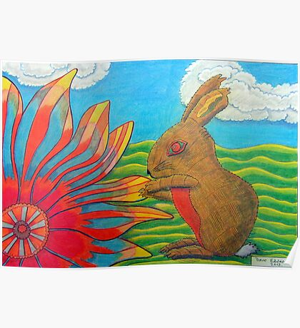 383 - FLOWER-LOVING BUNNY - DAVE EDWARDS - COLOURED PENCILS - 2013 Poster