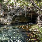 Gran Cenote by Nicolas Noyes