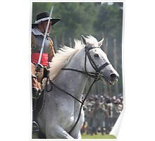 Cavalry Horse Poster