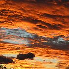 Canberra Sunset 2 by Sally Haldane