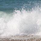 The Wave Crash by Sally Haldane
