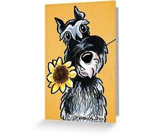 Sunny Schnauzer Greeting Card