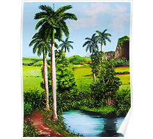 Typical country Cuban landscape Poster