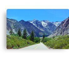 Driving Canvas Print