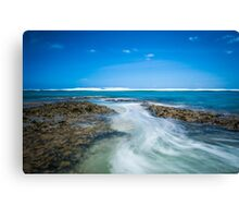 Coming in with a Rush Canvas Print