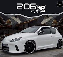 206 evo by barraky