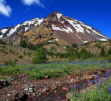 North Sister over Soap Creek, Oregon by DArthurBrown