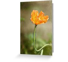 Orange Wrinkles Greeting Card