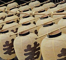 Japanese lanterns by Joan DiGeorge
