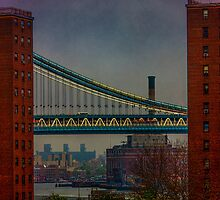 View From The Brooklyn Bridge, New York City by Chris Lord