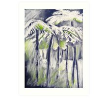 Tree ferns in the cold rainforest Art Print