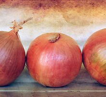 Onions three by Clare Colins