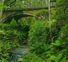 Leura Cascades curves .. take 2 by Michael Matthews