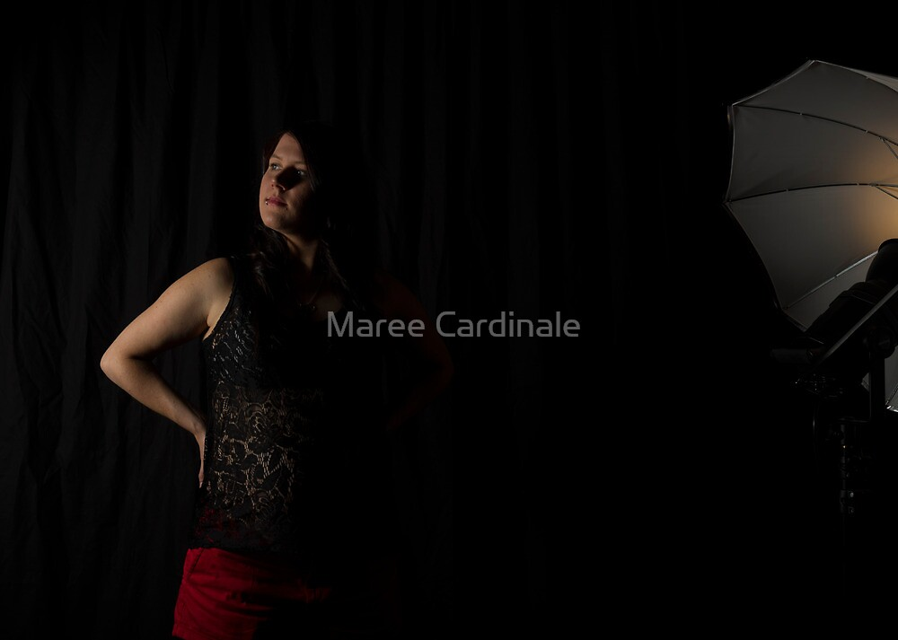 Waiting in the shadows by Maree Cardinale