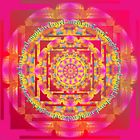 Color Healing Mandala Live Love Laugh by shoffman