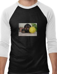 Tiny Rottweiler Puppy Playing With Large Toy Ball Men's Baseball ¾ T-Shirt
