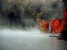 Fog and Fire by Gisele Bedard