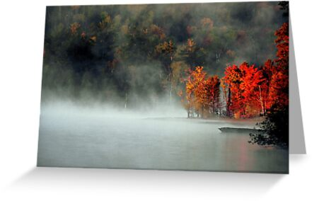 Fog and Fire by Gisele Bedard