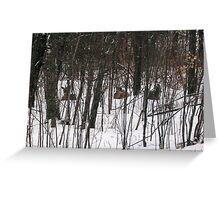 Deer Home Sweet Home Greeting Card