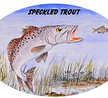 Speckled Trout by bill holkham
