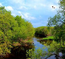 LASALLE RIVER by Larry Trupp