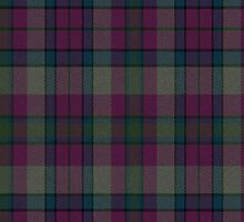 02549 Union County, New Jersey E-fficial Fashion Tartan Fabric Print Iphone Case by Detnecs2013