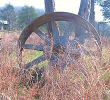 Giant Wheel by caseygatlin