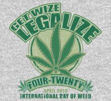 Get Wize by GritFX